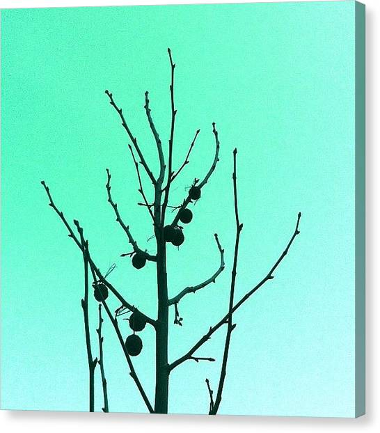 Minimalism Canvas Print - Perfection. Remixed by Courtney Haile