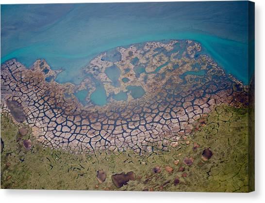 Permafrost Polygons On The Coast Canvas Print