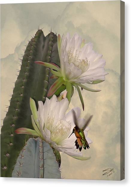 Peruvian Apple Cactus Flowers And Hummingbird Canvas Print