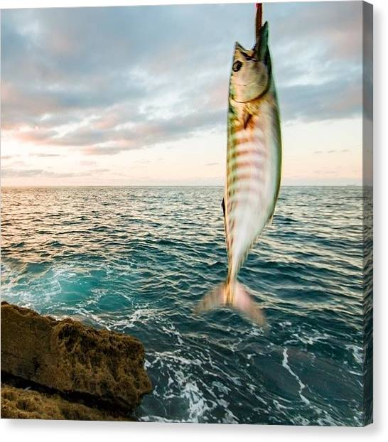 Tuna Canvas Print - #pesca #castro-urdía Les #verano by Natalia Gomez