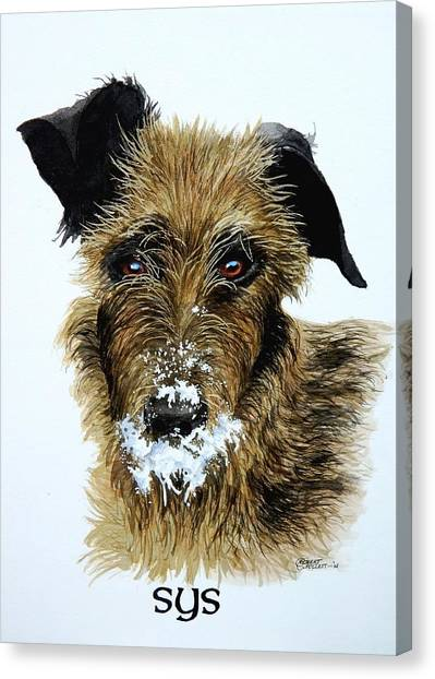 Pet Portraits Now Available Canvas Print