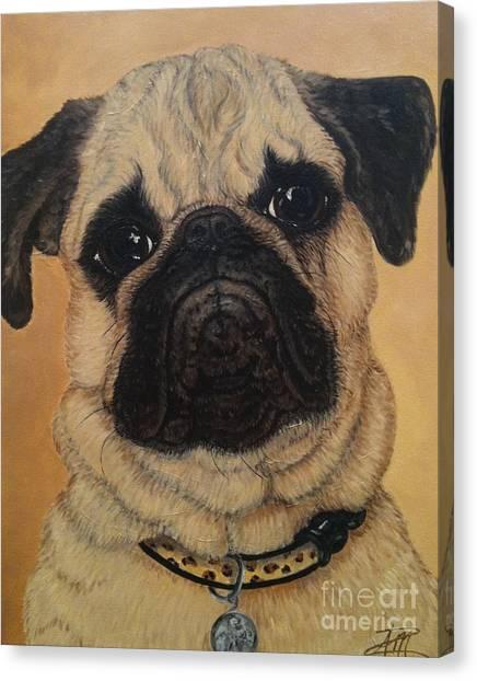 Petey Canvas Print