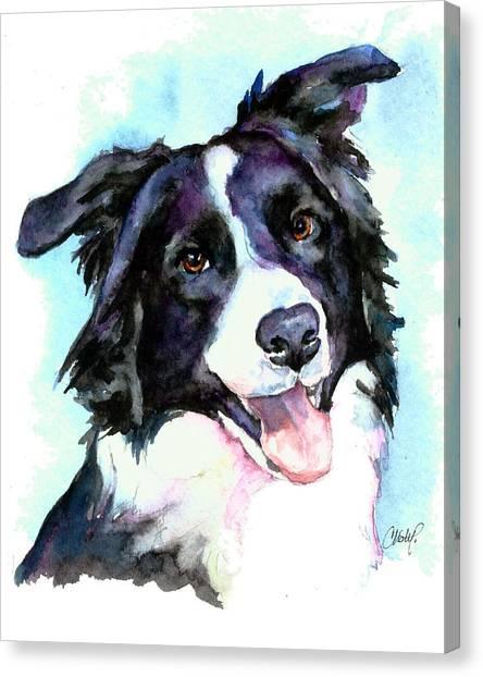 Petey Border Collie Canvas Print
