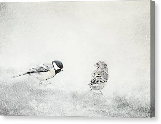Search Canvas Print - Petrels by Heike Hultsch