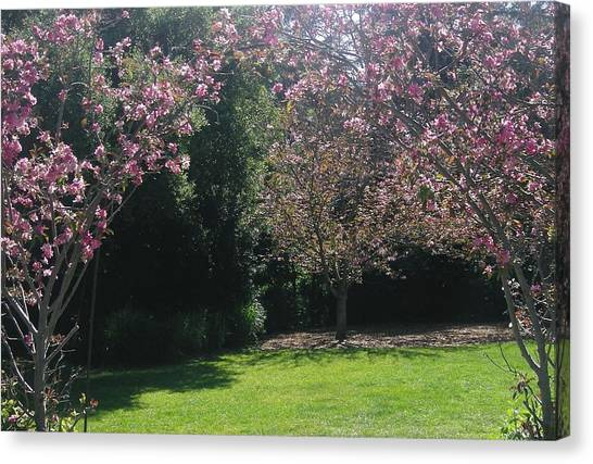 Petty In Pink Canvas Print by Marian Jenkins
