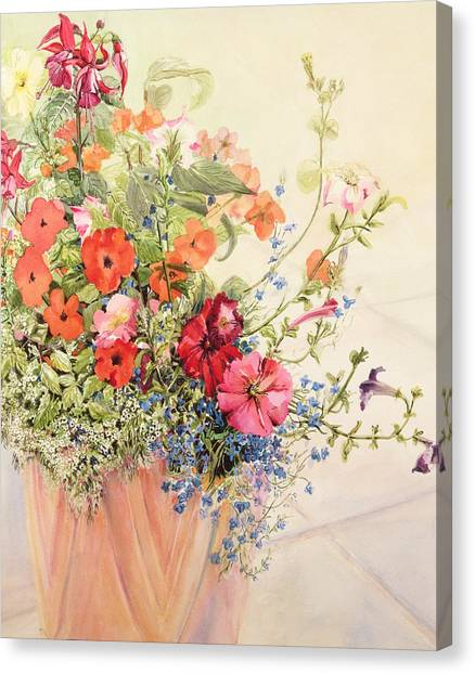 In Bloom Canvas Print - Petunias Lobelias Busy Lizzies And Fuschia In A Terracotta Pot by Joan Thewsey