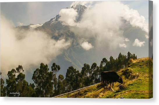 Peru Mountains With Cow Canvas Print