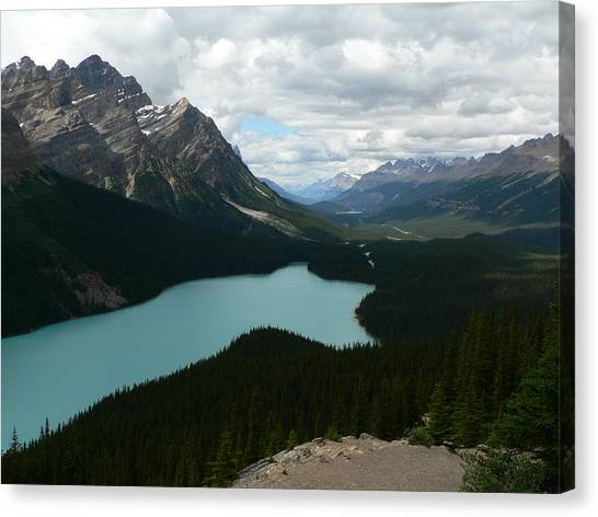 Peyote Lake In Banff Alberta Canvas Print
