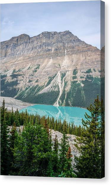 Canada Glacier Canvas Print - Peyto Lake 1 by Douglas Barnett