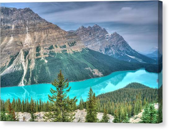 Canada Glacier Canvas Print - Peyto Lake 2 by Douglas Barnett