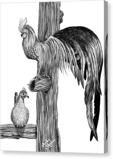 Phoenix Chicken Canvas Print by Ashe Skyler