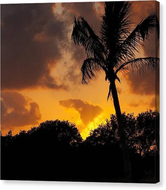 Everglades Canvas Print - #photographersofinstagram by Shawn Baker