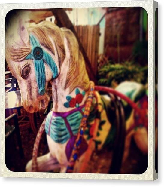 Decorative Canvas Print - Blue Heaven Carousel Horse by Dani Hoy