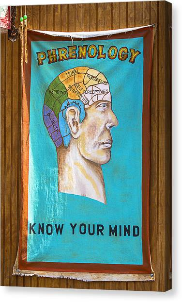 Chin Canvas Print - Phrenology by Garry Gay