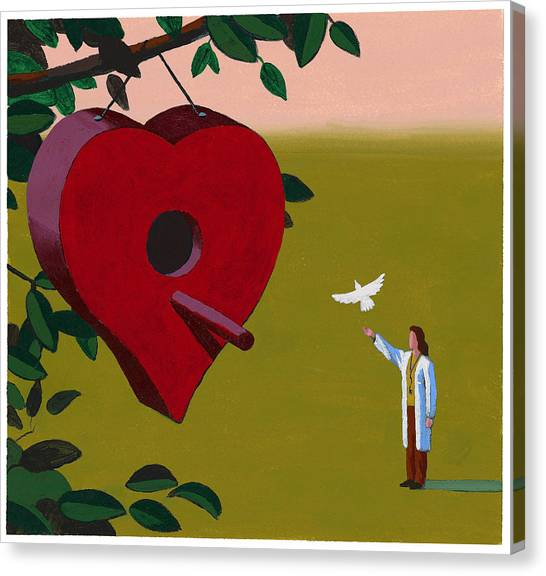 Physician Releasing Dove Canvas Print by Jonathan Evans