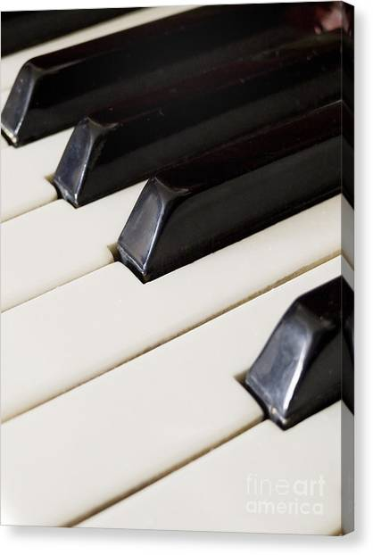 Synthesizers Canvas Print - Piano Keys by Jelena Jovanovic