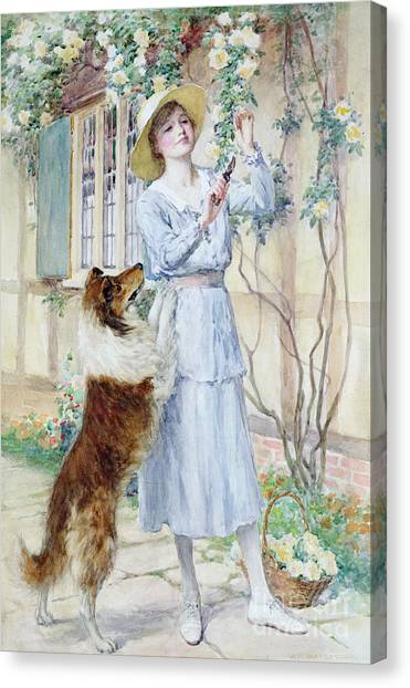 Border Collies Canvas Print - Picking Roses by William Henry Margetson
