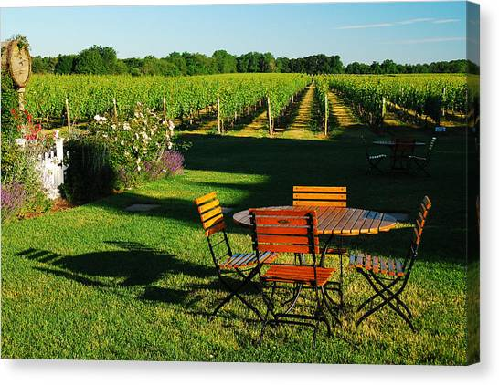 Picnic In The Vineyard Canvas Print