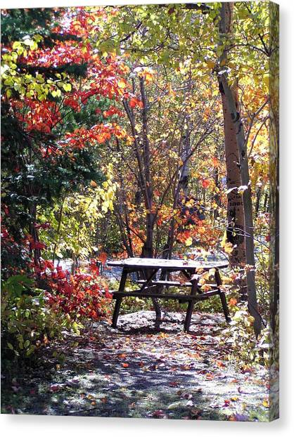 Picnic Memories Canvas Print