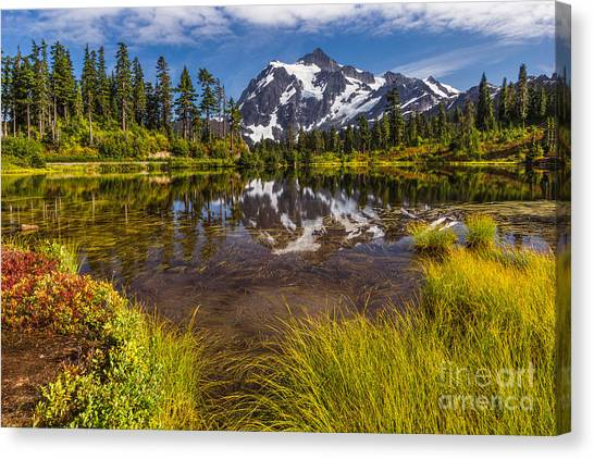 Picture Perfect Day Canvas Print