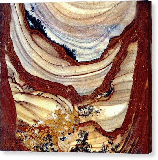 Kalahari Desert Canvas Print - Picture Jasper by Dirk Wiersma