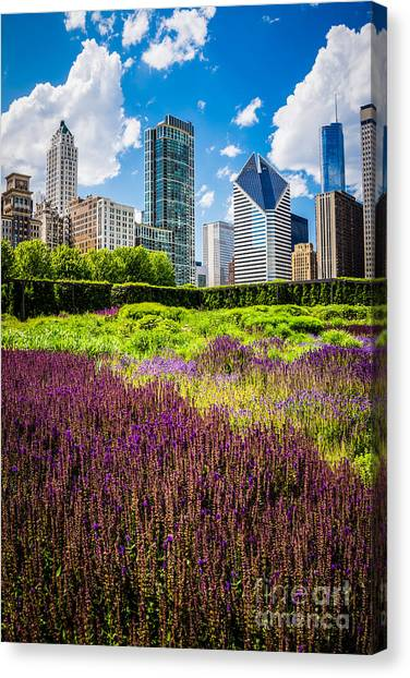 Illinois Canvas Print - Picture Of Chicago Skyline With Lurie Garden Flowers by Paul Velgos