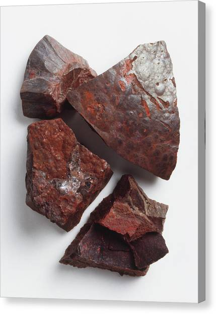 Ore Canvas Print - Pieces Of Iron Ore by Dorling Kindersley/uig