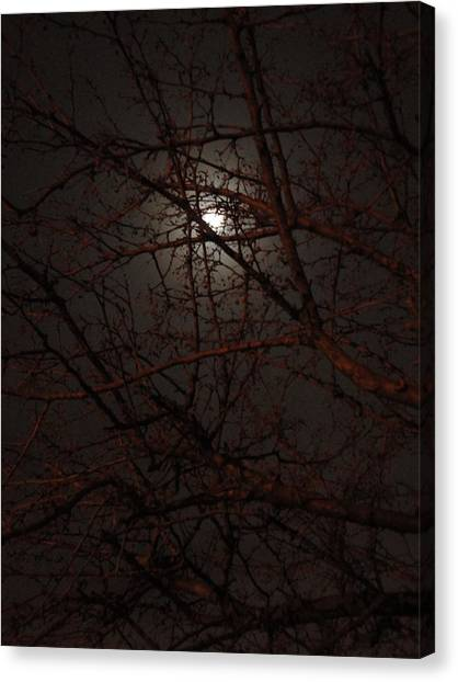 Pieces Of The Moon Canvas Print by Guy Ricketts