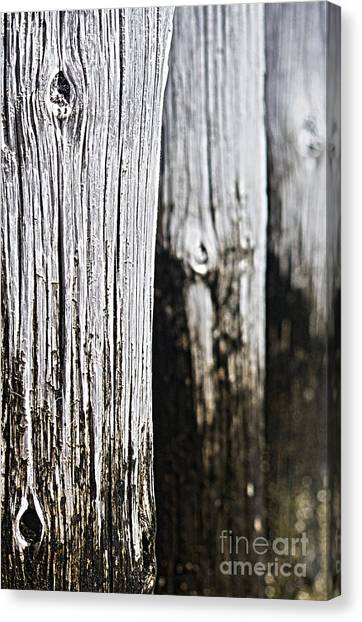 Pier Wood Canvas Print