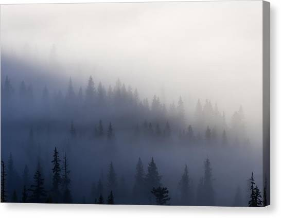 Cloud Forests Canvas Print - Piercing The Veil by Mike  Dawson