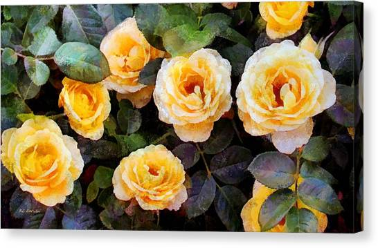 Pierre's Peach Roses Canvas Print