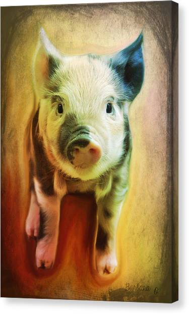 Pig Is Beautiful Canvas Print