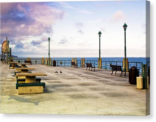 Pigeon Meeting At Redondo Pier Canvas Print