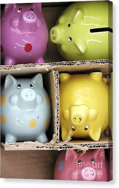 Pigs In A Box Canvas Print