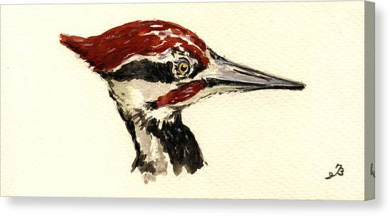 Woodpecker Canvas Print - Pileated Woodpecker Head Study by Juan  Bosco