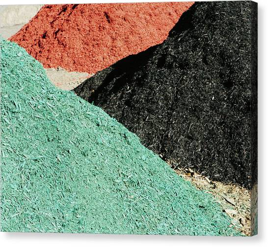 Piles Of Multi-colored Bark Wood Chips Canvas Print