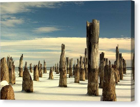 pilings II Canvas Print