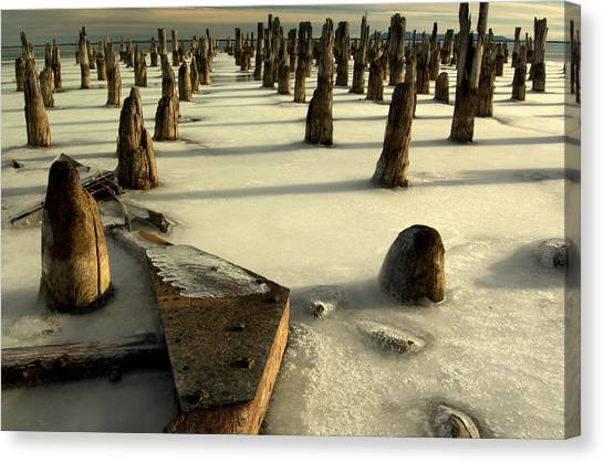 pilings III Canvas Print