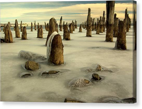 pilings VII Canvas Print