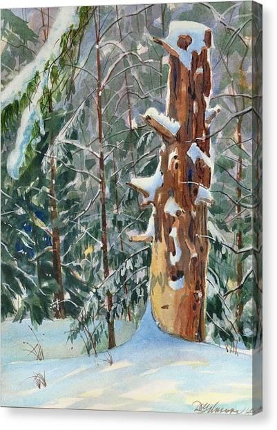 Pine Sentinel Canvas Print
