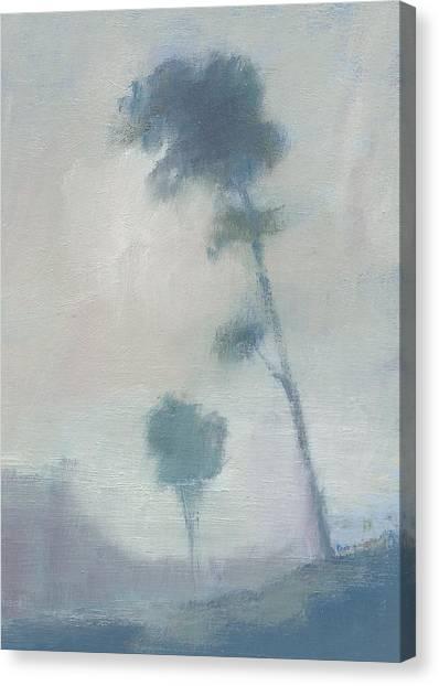 Pine Trees Through The Twilight Mist Canvas Print by Alan Daysh