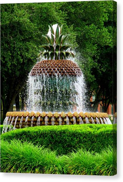 Pineapple Fountain 2 Canvas Print