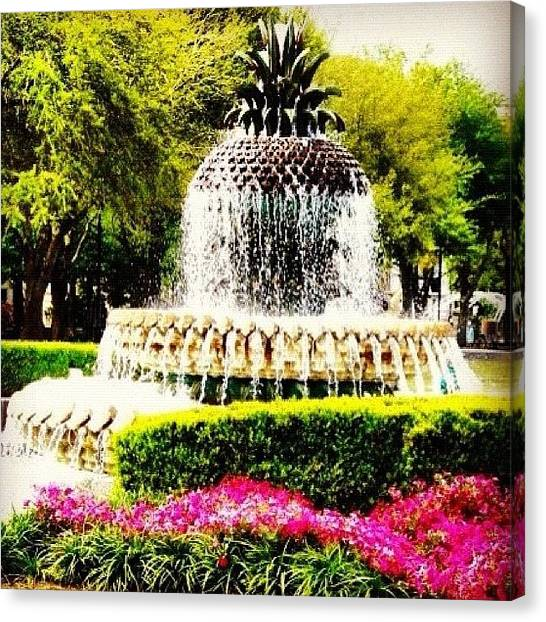 South Carolina Canvas Print - Pineapple Fountain  by Megan Kenyon