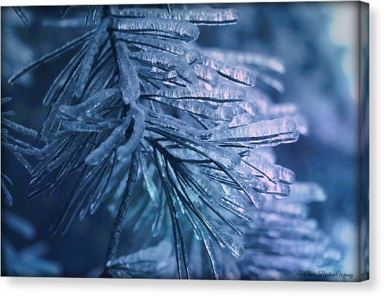 Pinecicles Canvas Print