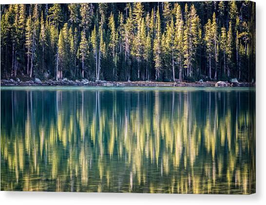 Pines Reflected In Tenaya Lake Canvas Print
