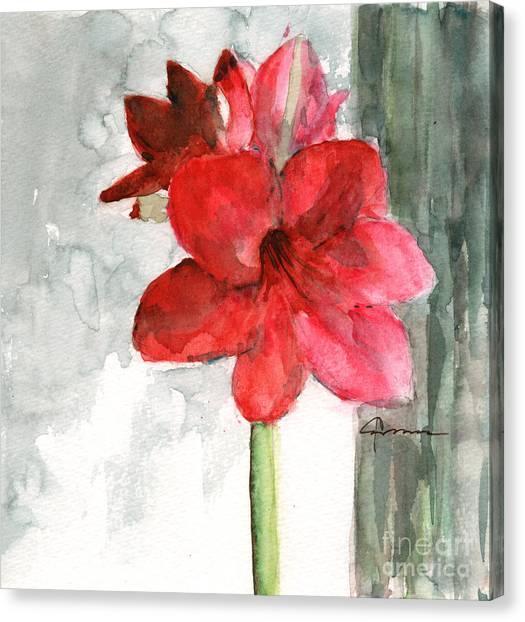 Amaryllis Canvas Print - Pink Amaryllis by Claudia Hafner