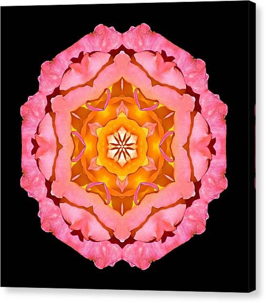 Pink And Orange Rose I Flower Mandala Canvas Print
