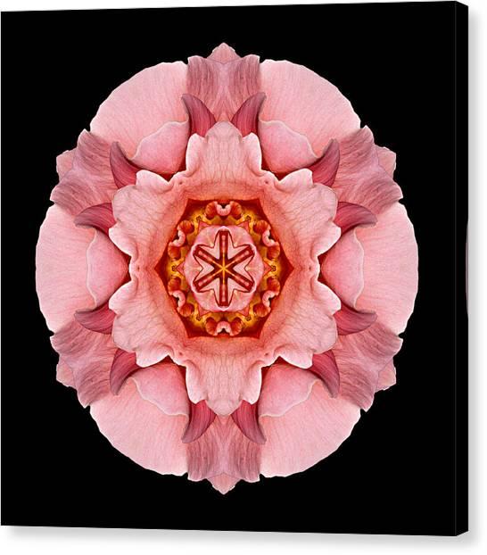 Pink And Orange Rose Iv Flower Mandala Canvas Print