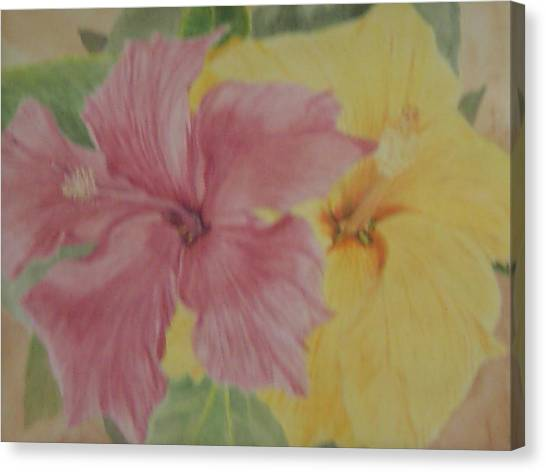 Pink And Yellow Hibiscus Canvas Print