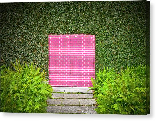 Bricks Canvas Print - Pink Brick Door by David Jordan Williams